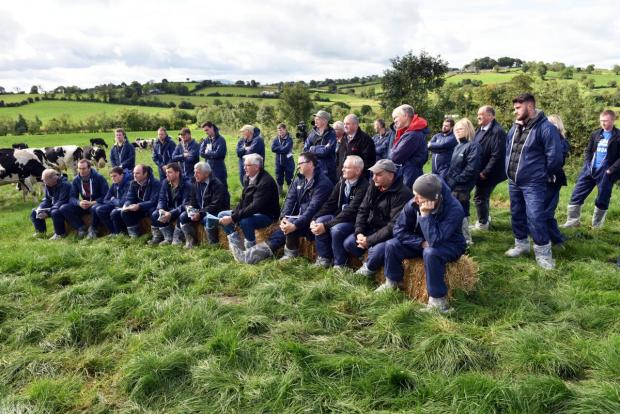Large crowds featured during the AFBI on farm events this week