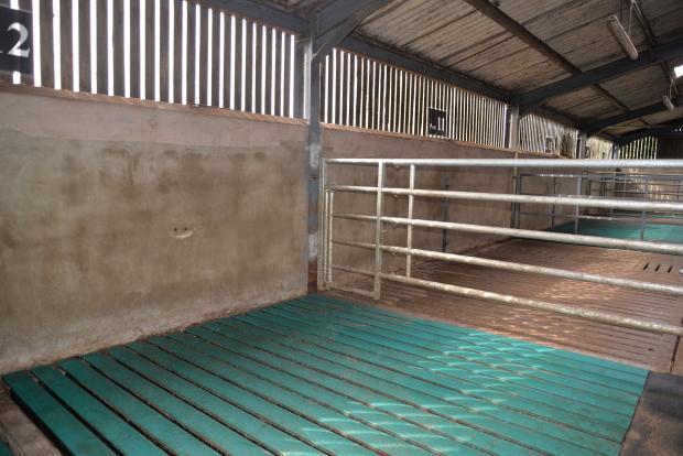 Trials at ABFI compared concrete and rubber slats