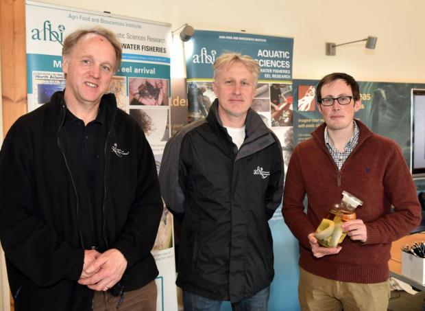 Pictured L and R Dr Robert Rosell and Mr Warren Campbell, AFBI Eel Research Team with Richard McCormick, AFBI Communications Manager (centre)