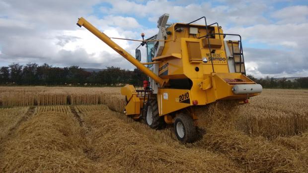 Winter Wheat harvest Limavady 2017