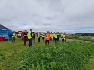 Inspecting the LTS experimental plots at AFBI Hillsborough