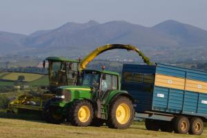 A wide range of factors impact on silage quality on local dairy farms