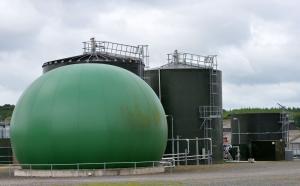 The AD Plant at AFBI Hillsborough