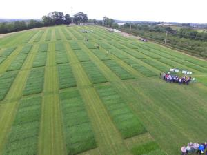 The extensive grass trial area at AFBI Loughgall which was used for More from Grass