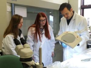 Catherine McGuckin, Julia Wilson and Richard O Hanlon inspect an ash sample for ash dieback